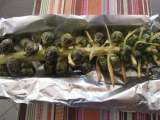 Recipe Roasted brussel sprouts